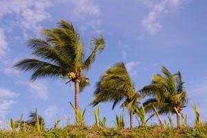 windstorm, hail & hurricane insurance san leon, texas